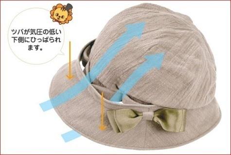 480ベルヌーイ帽子.jpg